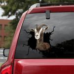 [sk1522-snf-tpa] Toggenburg Goat Crack Sticker Cattle Lover