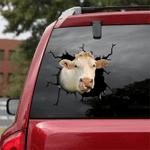 [sk1212-snf-ptd] Charolais Cow Crack Sticker cattle Lover