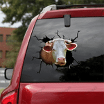 [sk1211-snf-ptd] simmental cow Crack Sticker cattle Lover