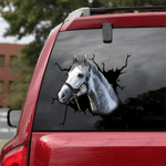 [DA0022-snf-tnt] Missouri Fox Trotter Crack car Sticker cattle Lover