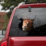 [sk1597-snf-tnt] Mustang Horse Crack Sticker Cattle Lover