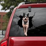 [LD0277-snf-lad] Australian Cattle Crack car Sticker dogs Lover