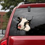 [DT0315-snf-tnt] Dairy cattle Crack car Sticker cows Lover