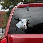 [sk1771-snf-tpa] Pygmy Goat Crack Car Sticker cattle Lover