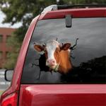 [DT0311-snf-tnt] Dairy cattle Crack car Sticker cows Lover