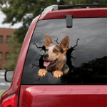 [DT0782-snf-tnt] Australian Cattle Dog Crack Car Sticker Dog Lovers