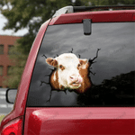 [DT0330-snf-tnt] Hereford cattle Crack car Sticker cows Lover