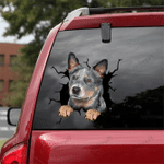 [DT0777-snf-tnt] Australian Cattle Dog Crack Car Sticker Dog Lovers