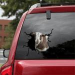 [sk1783-snf-tpa] Nigerian Dwarf Goat Crack Car Sticker cattle Lover