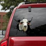 [sk1178-snf-ptd] Brahman Cow Crack Sticker cattle Lover