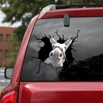 [sk1218-snf-lad] Donkey Crack Sticker cattle Lover