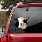 [sk1279-snf-tpa] Baby La Mancha Goat Crack Sticker Cattle Lover