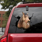 [DA0017-snf-tnt] Morgan Horse Crack Sticker Cattle Lover
