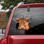 [DT0335-snf-tnt] Ternera Gallega Cattle Crack car Sticker cows Lover