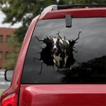[sk1184-snf-ptd] shorthorn cow Crack Sticker cattle Lover