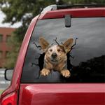 [DT0784-snf-tnt] Australian Cattle Dog Crack Car Sticker Dog Lovers
