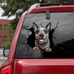[LD0278-snf-lad] Australian Cattle Crack car Sticker dogs Lover