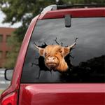 [DT0316-snf-tnt] Highland cattle Crack car Sticker cows Lover