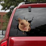 [sk1840-snf-tpa] Funny Pig Crack Sticker cattle Lover