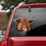 [DT0337-snf-tnt] Angus cattle Crack car Sticker cows Lover
