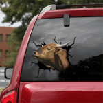 [DT0325-snf-tnt] Shorthorn Cattle Crack car Sticker cows Lover