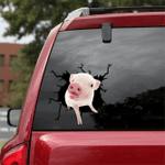 [sk1228-snf-tpa] Mini Pig Friends Crack Sticker cattle Lover