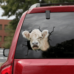 [DT0324-snf-tnt] Shorthorn Cattle Crack car Sticker cows Lover