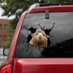 [sk1317-snf-lad] DORSET SHEEP Crack Sticker cattle Lover