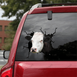 [DT0327-snf-tnt] Hereford cattle Crack car Sticker cows Lover