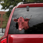 [DT0319-snf-tnt] Danish Red cattle Crack car Sticker cows Lover