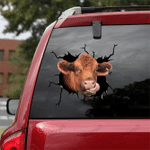 [sk1093-snf-ptd] Red Angus Cow Crack Sticker Cattle Lover