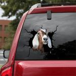 [sk1457-snf-lad] Goat Crack Car Sticker cattle Lover