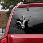 [sk1281-snf-tpa] Alpine Goat Crack Sticker Cattle Lover