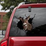 [sk1219-snf-lad] Donkey Crack Sticker cattle Lover