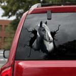 [DA0028-snf-tnt] Gypsy Vanners horse Crack car Sticker cattle Lover