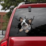 [TH1004-snf-tpa] Australian Cattle Crack car Sticker dogs Lover