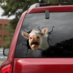 [DT0333-snf-tnt] Charolais cattle Crack car Sticker cows Lover