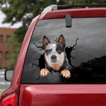 [DT0773-snf-tnt] Australian Cattle Dog Crack Car Sticker Dog Lovers