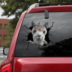 [sk1118-snf-ptd] Pig crack car Sticker Cattle lover