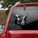 [TH0065-snf-tpa] Pygmy Goat Crack car Sticker cattle Lover