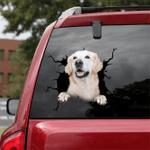 [DA0232-snf-tnt] Golden Retriever Crack car Sticker dogs Lover