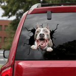 [LD0400-snf-lad] Pitbull Crack car Sticker dogs Lover