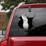 [BV0120-snf-tnt] Solomons Cockatoo Parrot Crack car Sticker birds Lover