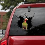 [BV0050-snf-tnt] Parrot Crack car Sticker birds Lover