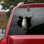 [BV0077-snf-tnt] Parrot Crack car Sticker Parrot Lover