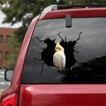 [BV0070-snf-tnt] Parrot Crack car Sticker birds Lover
