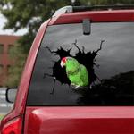 [BV0074-snf-tnt] Parrot Crack car Sticker birds Lover
