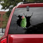 [BV0205-snf-tnt] Red-lored Amazon Crack car Sticker birds Lover