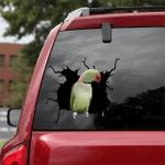 [DT0069-snf-tnt] Alexandrine Parrot Crack car Sticker birds Lover
