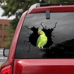 [BV0064-snf-tnt] Cockatiel Crack car Sticker birds Lover